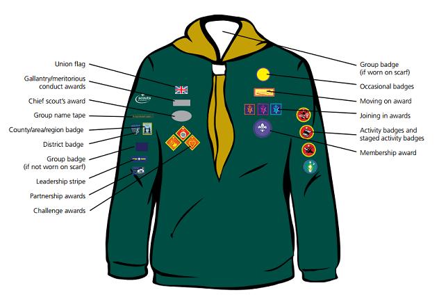 Cub Badges Positions