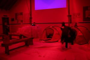 Cubs - Antarctic camp at night