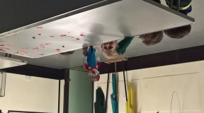 Cubs puppet play1