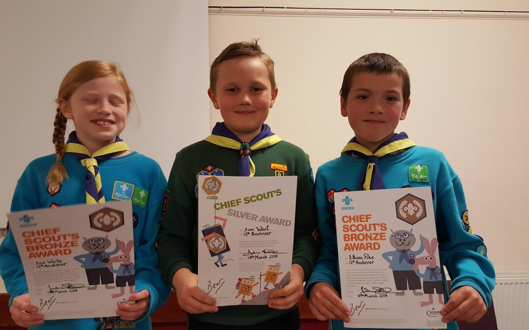 Chief Scout Award Winners from the 12th