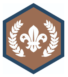 Beavers win Chief Scout Awards